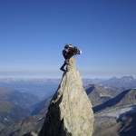Le Sphinx Zinalrothorn