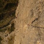 Tête d'aval - Ranxerox - Ca gazouille