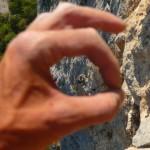 Topomaniak - Cherchez la grimpeuse