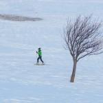 Col de Roche Robert - L'arbre et la fille