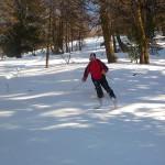 Ski - Col de la Lauze - Popow forêt