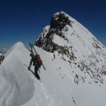 Piz Bernina - L'arête neigeuse de la Bernina