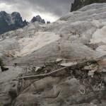 Glacier Blanc - Les restes d'un coucou?