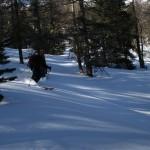 Combe du Malazen - De la fine et légère en forêt