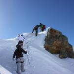 Pic du Glacier d'Arsine - Sur l'arête sommitale