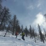 Hors piste - Monetier - Dans la forêt secrête