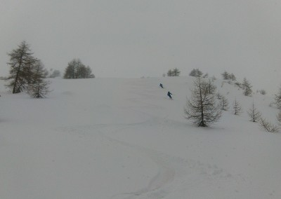 Tete des raisins - Between spaced trees, perfect place to ski