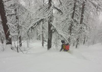 Hors-piste Puy-St-Vincent - Session opulence dans les bois