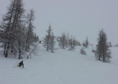 Hors piste Abriès - Premiers runs dans les bois