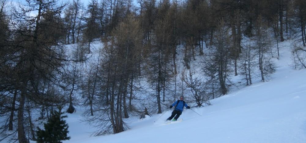 Ski de randonnée - Les Orres - Des bois tout poudre!