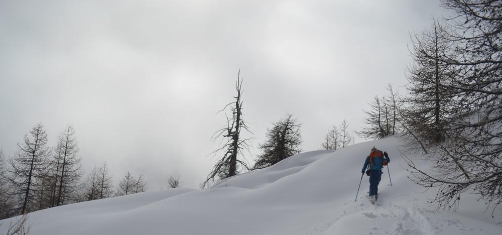 Ski de rando - Crête de la Seyte - Plaisir de la montée