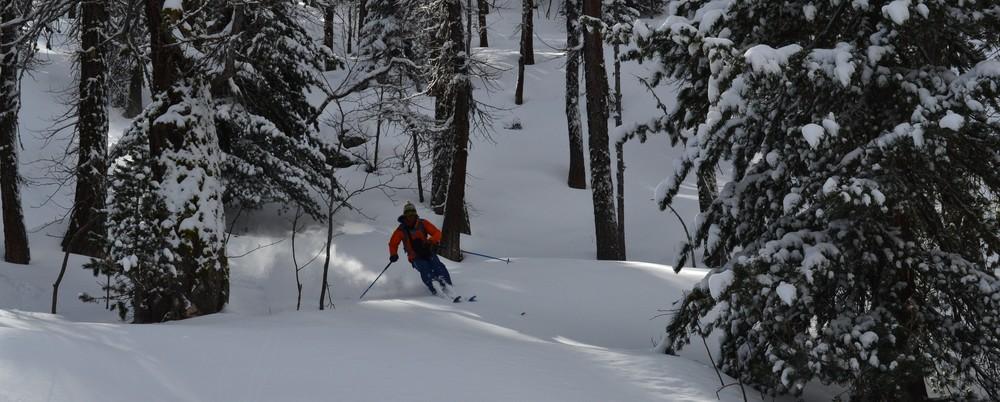 Ski de rando - Crête de la Seyte - Dans les bois