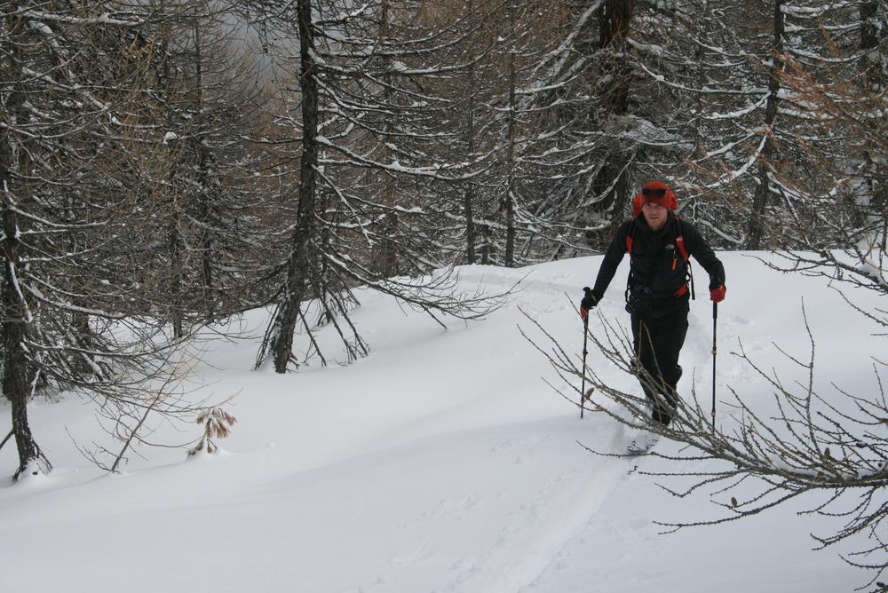 Ski de rando - Crête de la Seyte - Promenons nous dans les bois