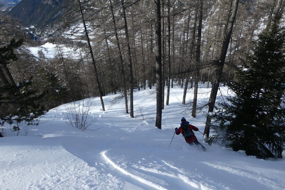 Free-rando-Crévoux - Quand la forêt s'ouvre