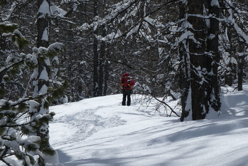 Week-end ski rando - Fouillouse - Forêt