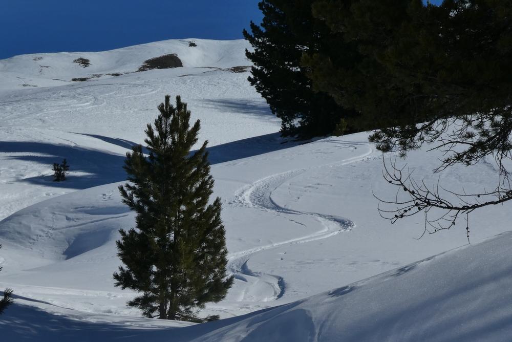 Initiation ski de randonnée - Paneyron - De la poudre encore?
