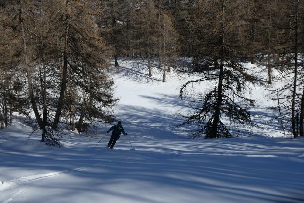 Découverte ski de randonnée - Tête des Aluzières - Poudre dans les bois