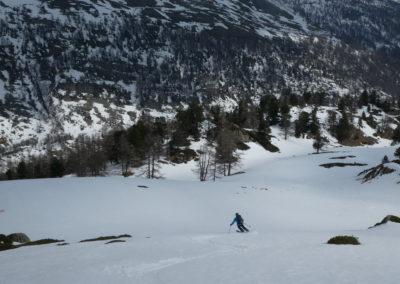 Raid ski randonnée Cerces - Champ de moquette