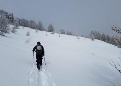 Ski randonnée Freissinières - A la trace